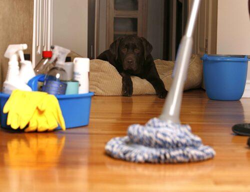 شركة تنظيف منازل راس الخيمة |0507429220| ممر السلام